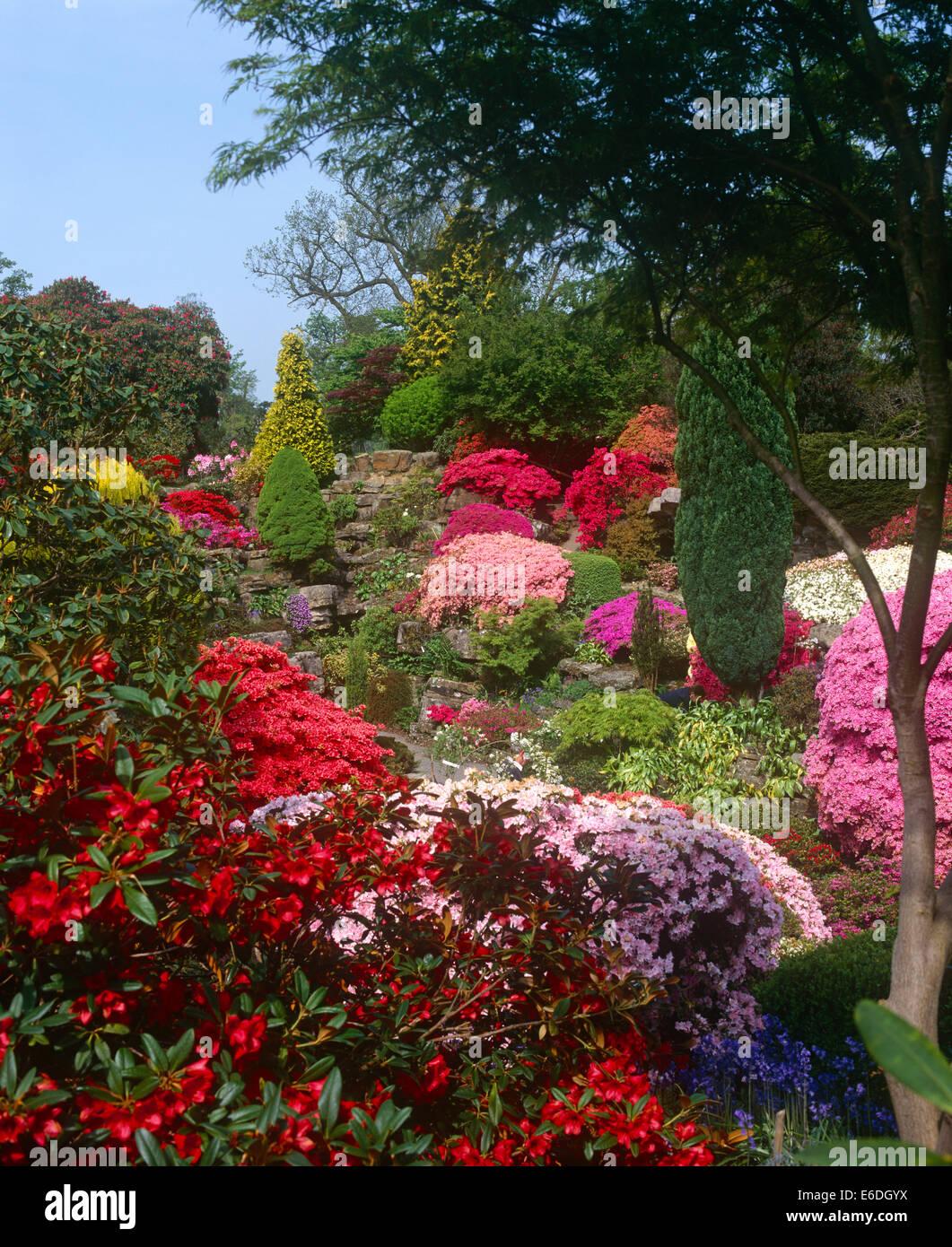The Rock Garden Gardens West Sussex UK - Stock Image