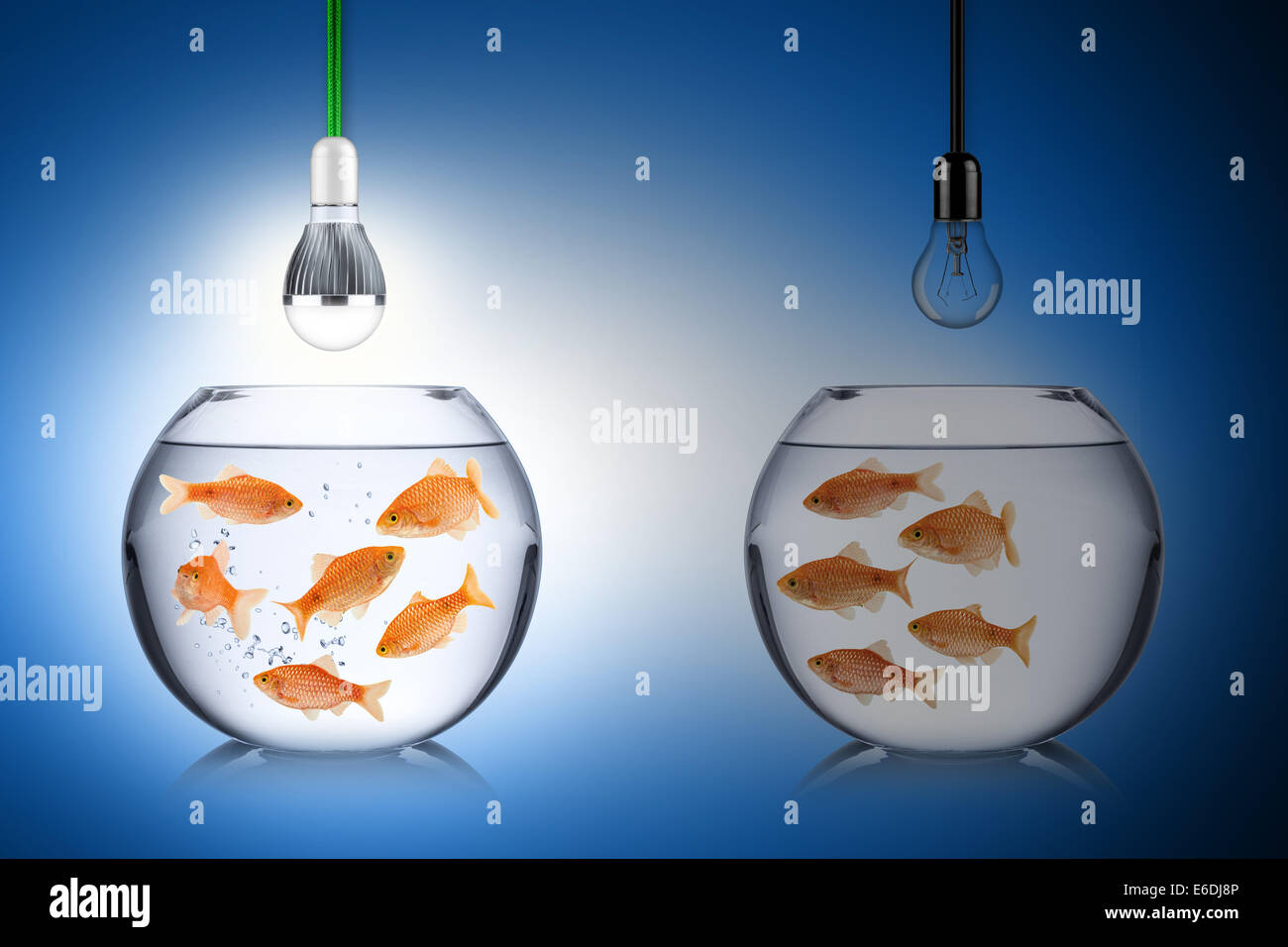 LED energy concept with fishs - Stock Image