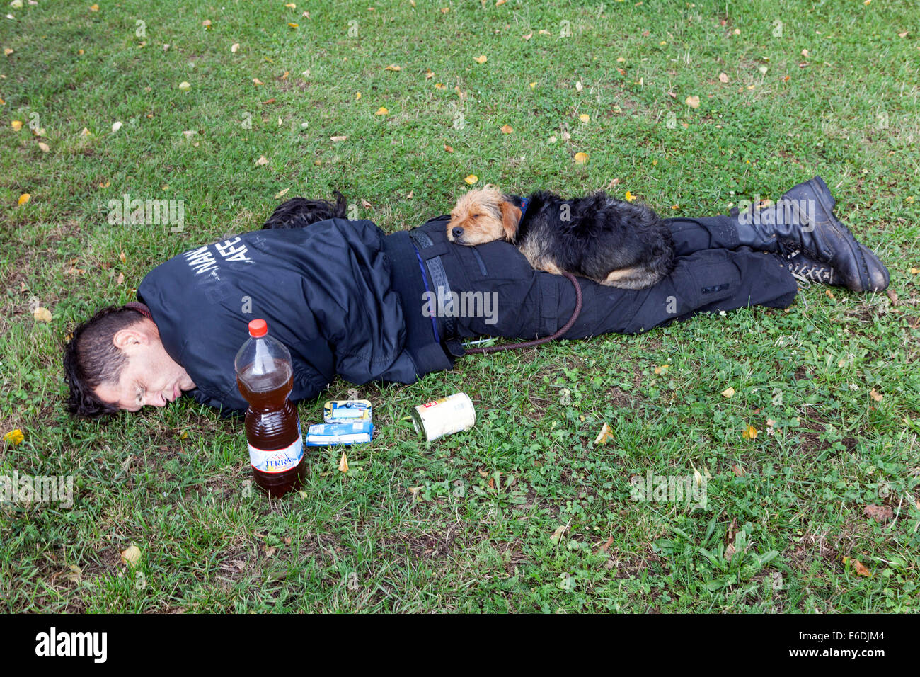 sleeping couple, a man and his dog on the grass, comic situations about friendship, Prague, Czech Republic - Stock Image