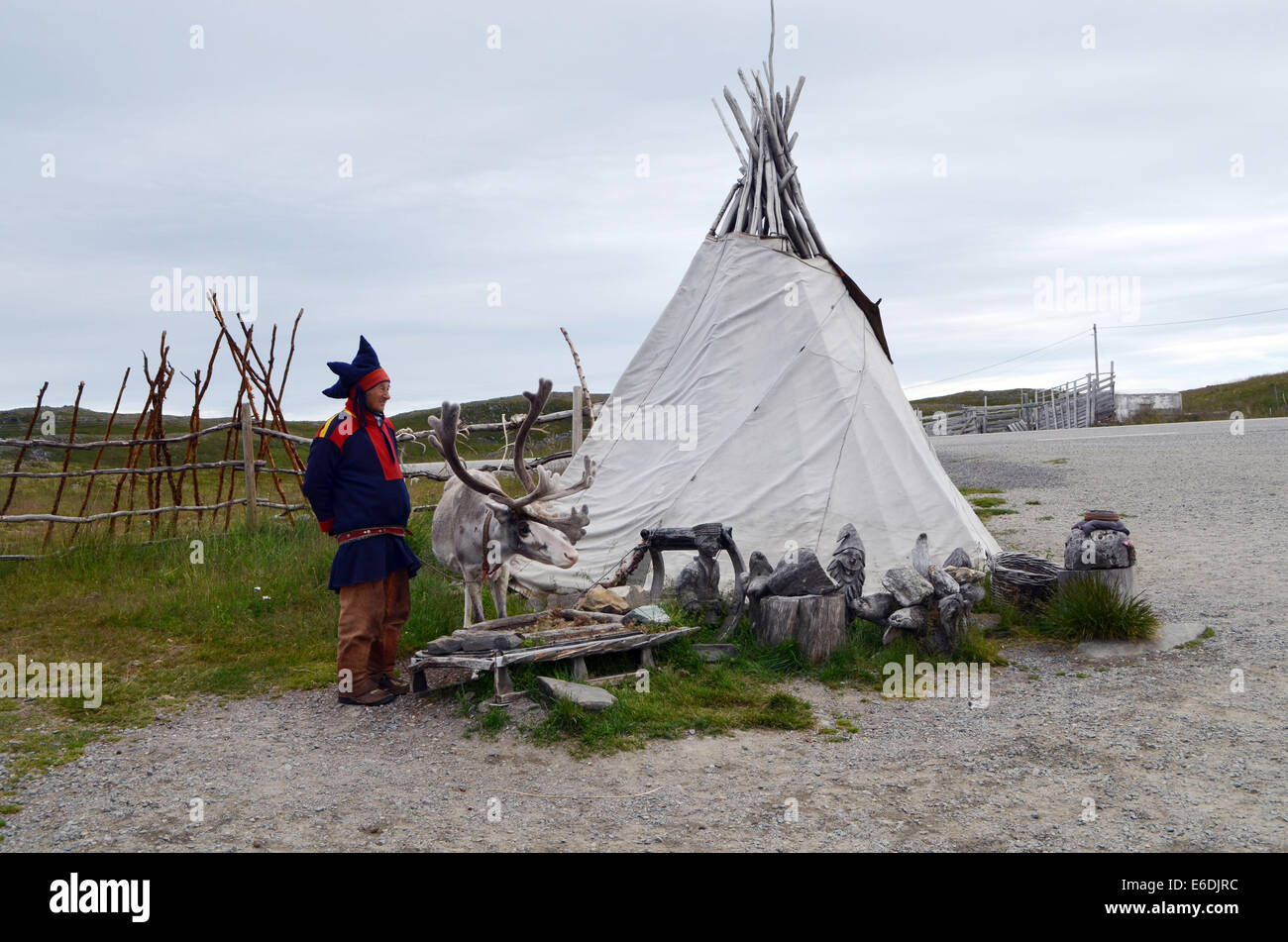 Honnigsvag, The Sami people, live like nomads with their deer all year round. The Sami people live with their deer. - Stock Image