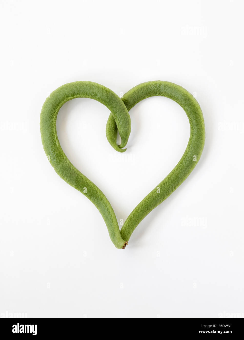 Curled Runner Beans in the shape of a heart - Stock Image