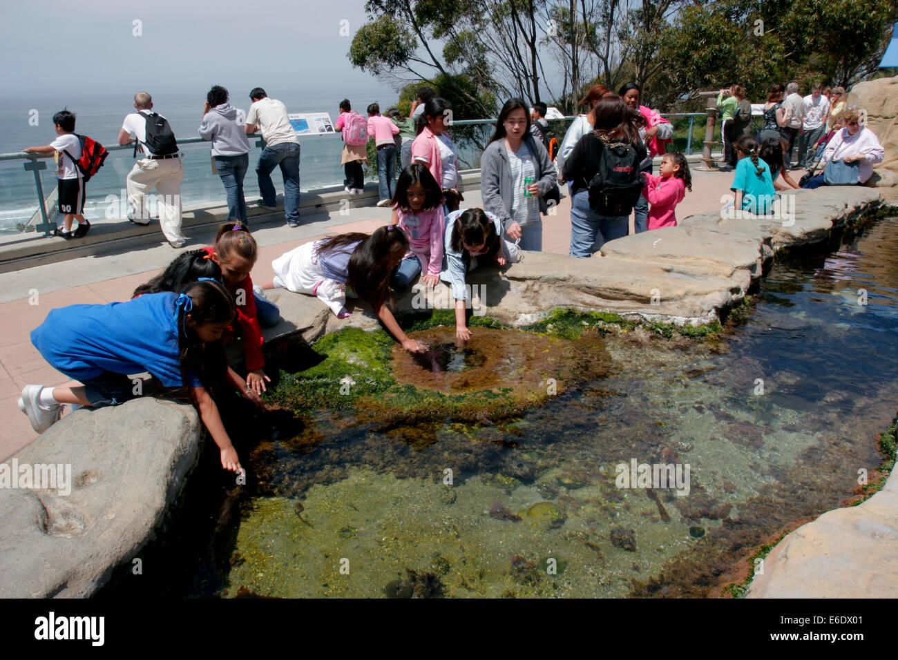 Birch Aquarium At Scripps, La Jolla, California, USA. - Stock Image