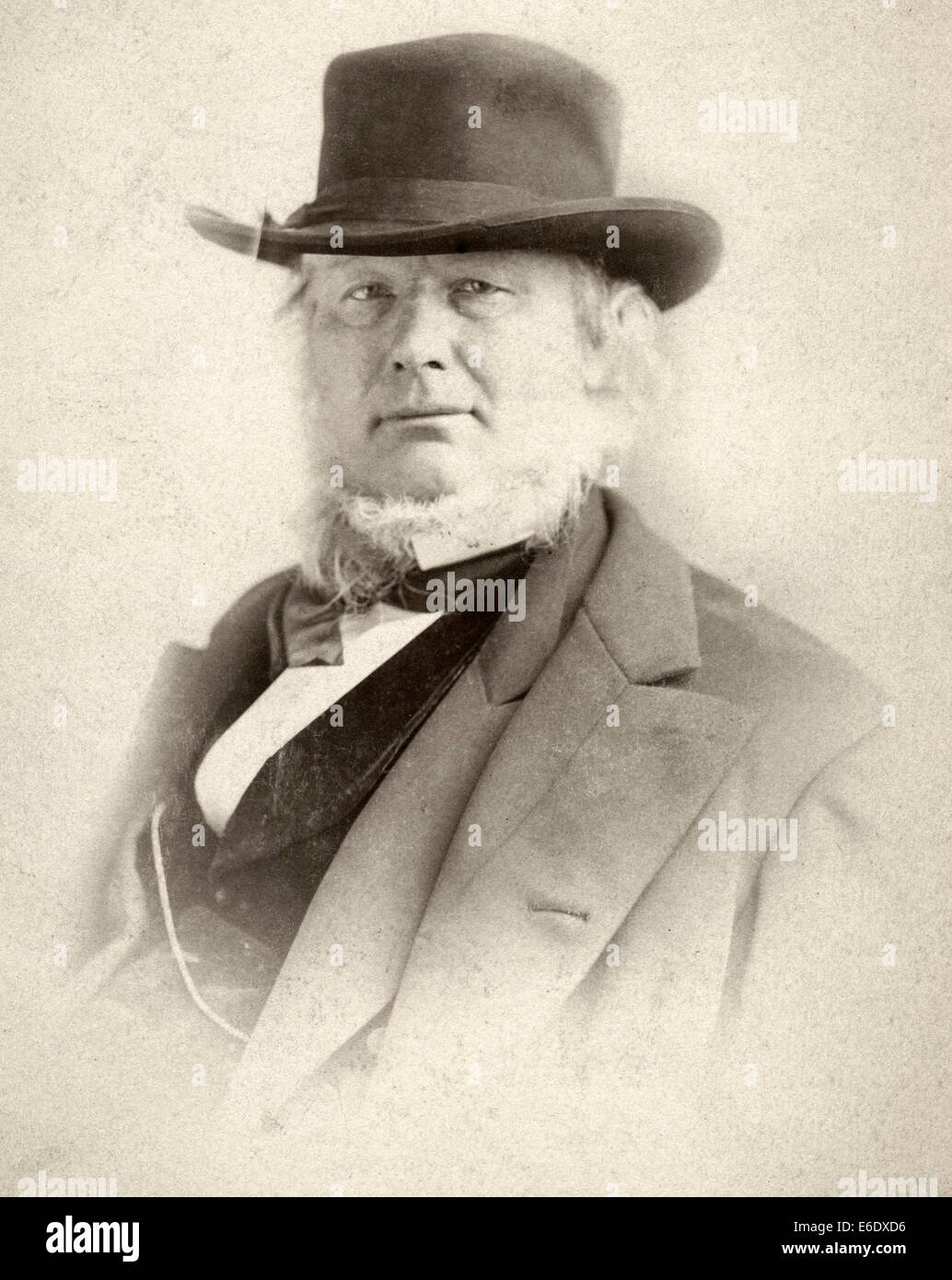 Horace Greeley (1811-1872), American Editor and Politician, Portrait, circa 1870 - Stock Image