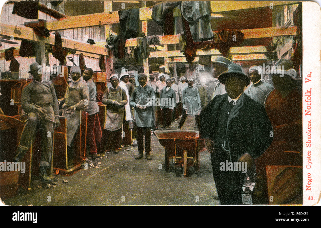 African-American Oyster Shuckers, Portrait, Norfolk, Virginia, USA, Hand-Colored Postcard, circa 1910 - Stock Image
