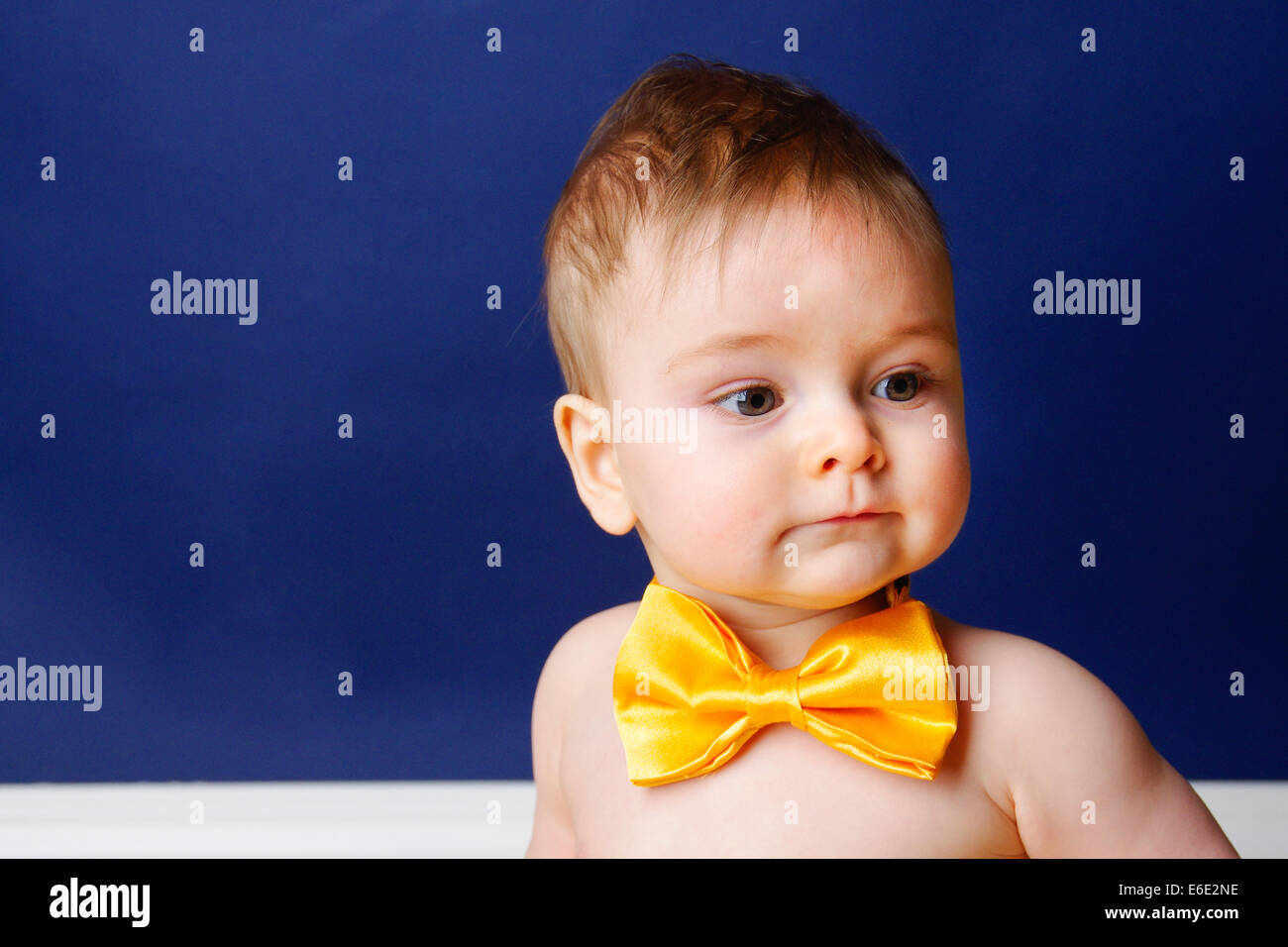 9 month old baby boy in a yellow bow tie - Stock Image