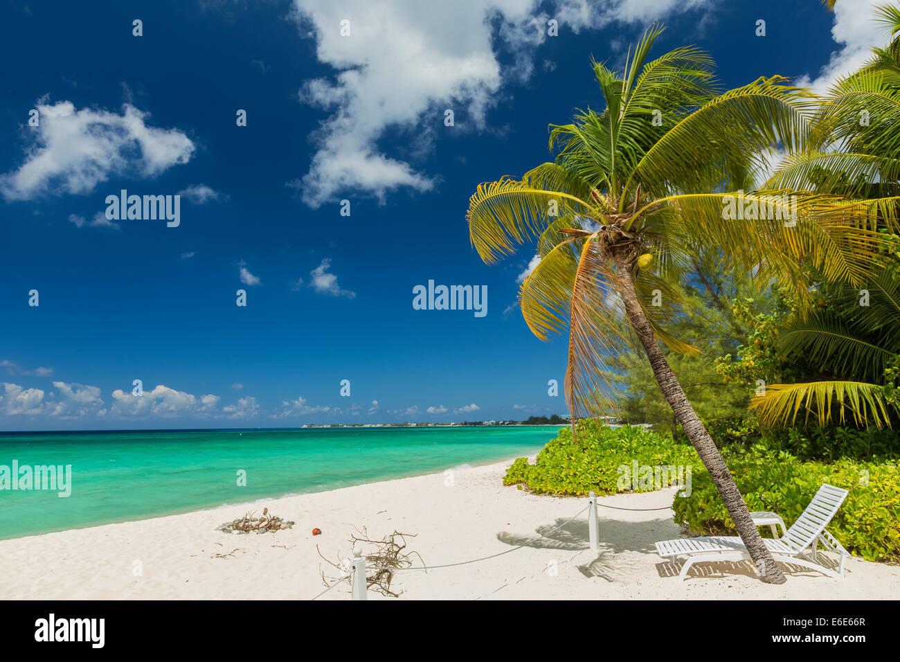 7 mile beach, Grand Cayman - Stock Image