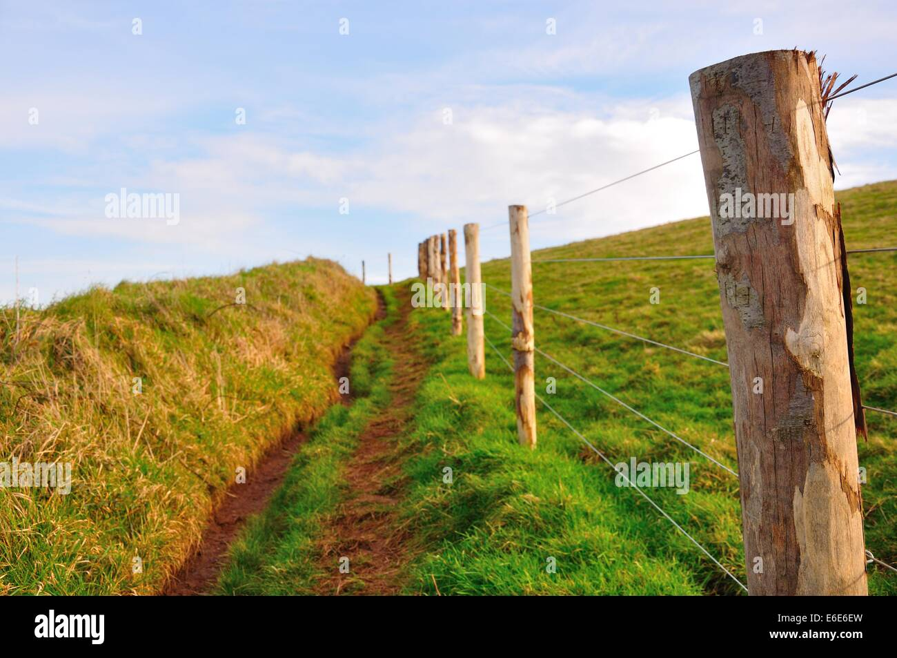 view up a Cornish country footpath with barbed wire and posts to one side and grassy bank to the other - Stock Image
