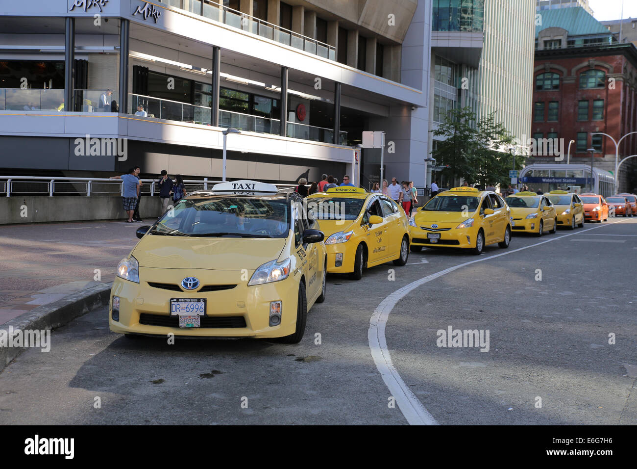 yellow Prius taxi lineup Vancouver - Stock Image