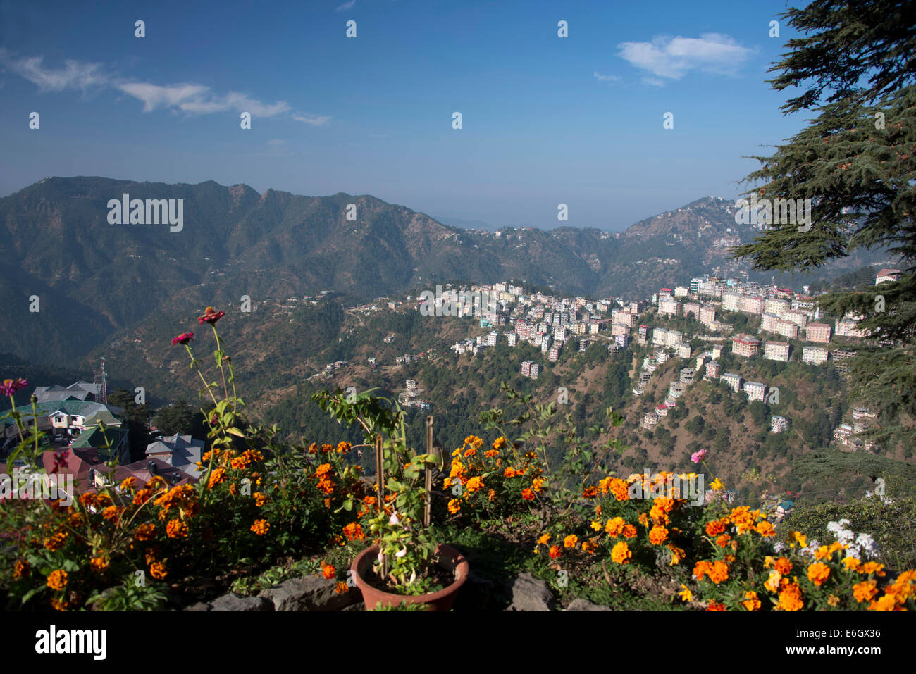 A morning view over part of Shimla suburbs on the Himalayan foothills in  Himachal Pradesh, India, - Stock Image