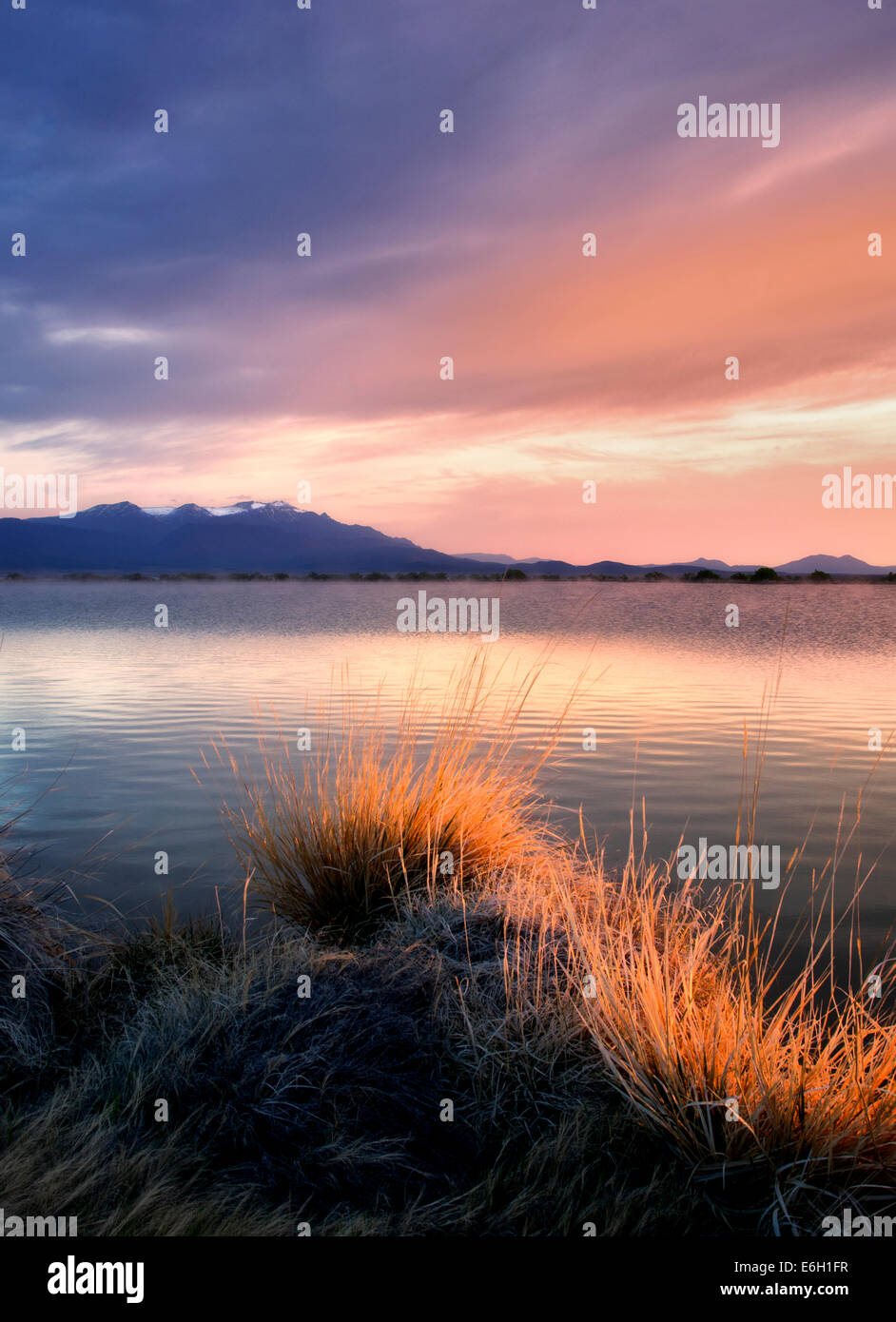 Sunrise on borax pond with Steens mountain.  Borax Lake Preserve, Oregon - Stock Image