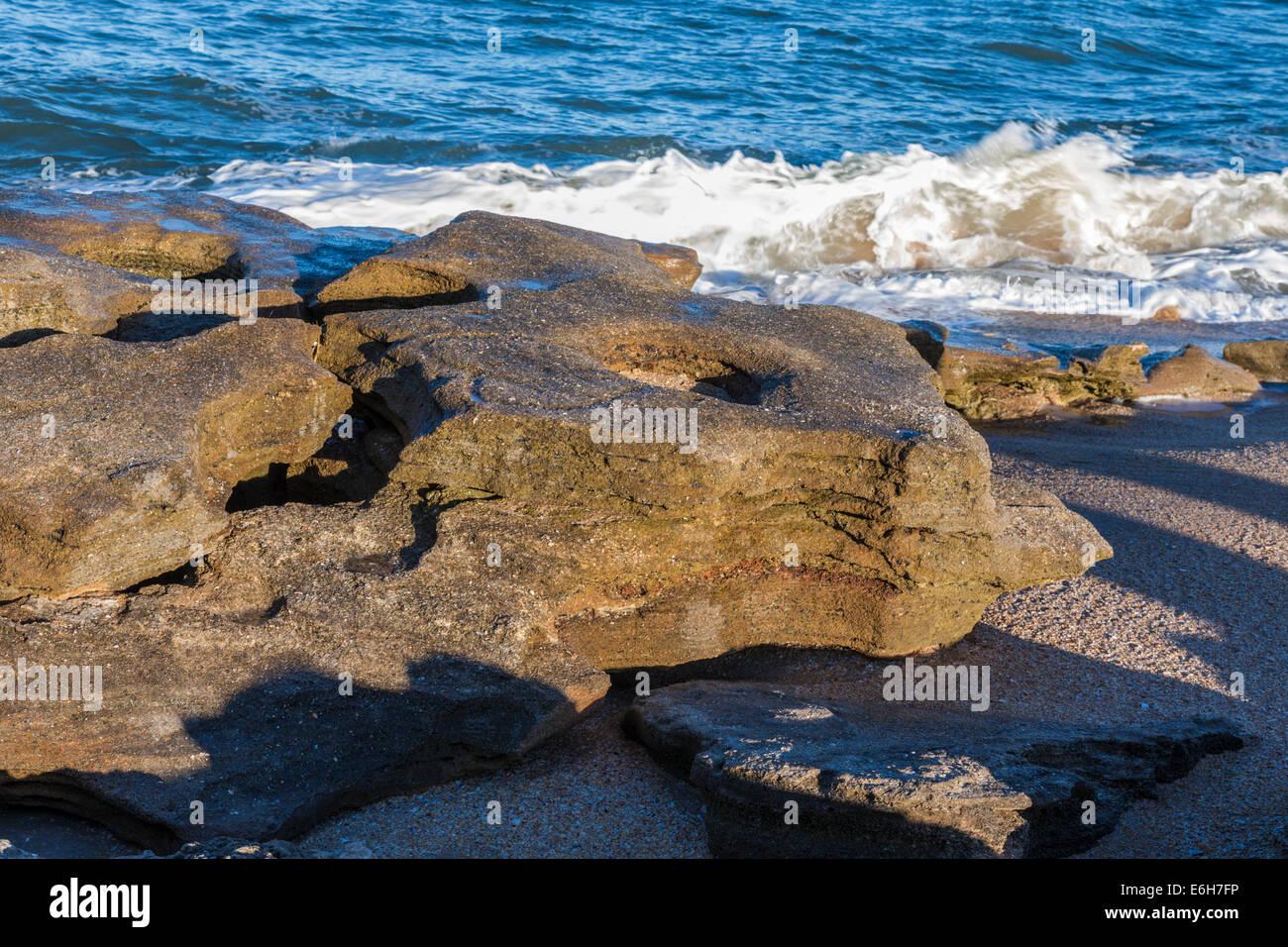 Coquina rock formations along coast of Atlantic Ocean at Washington ...