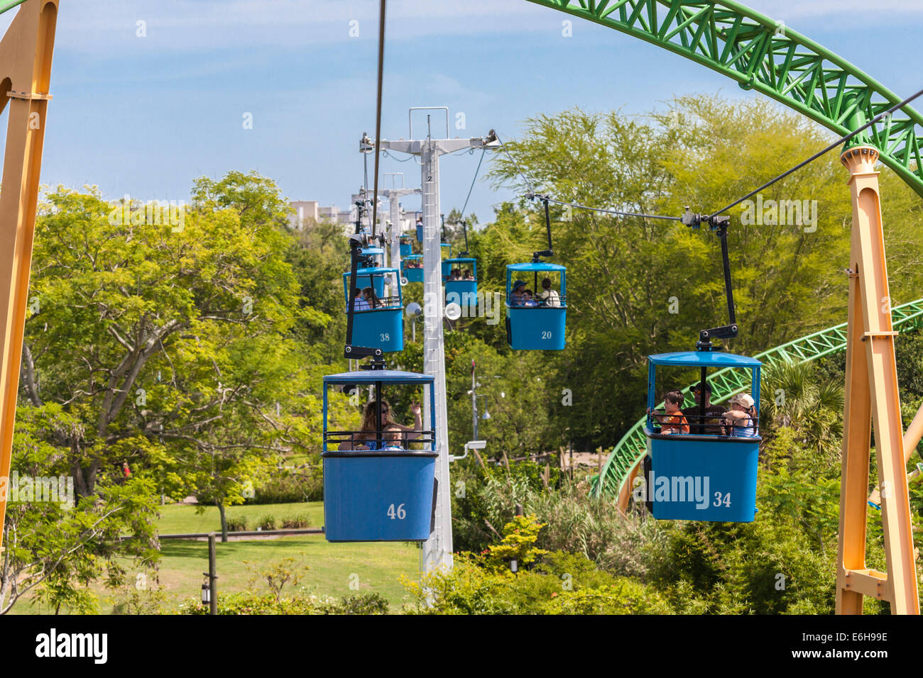 Gentil Park Guests Riding The Skyride Cable Cars Past The Cheetah Hunt Roller  Coaster At Busch Gardens