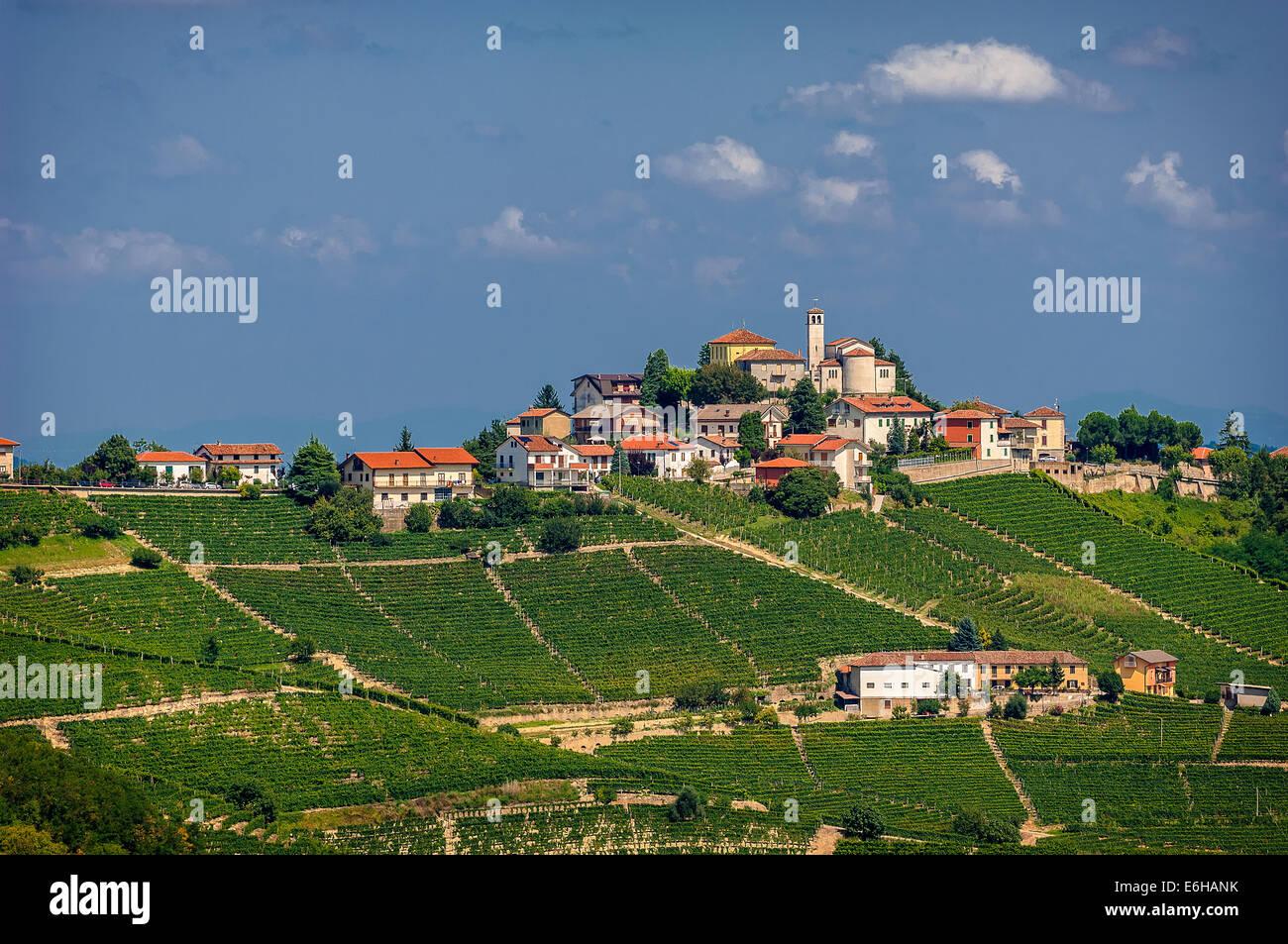 Italy Piedmont Langhe Camo - Stock Image