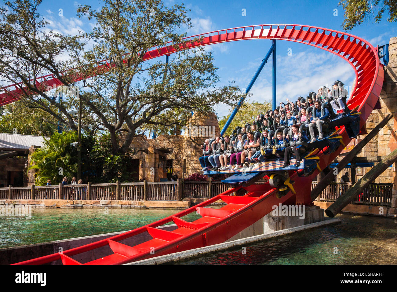 Park Guests Ride The Sheikra Roller Coaster At Busch Gardens Theme