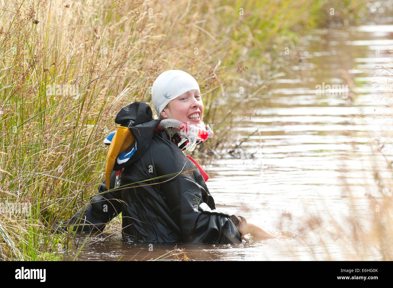 Llanwrtyd Wells, UK. 24th August 2014. Sian Williams 32 from Cardiff enters the cold bog as a penguin water to compete. - Stock Image