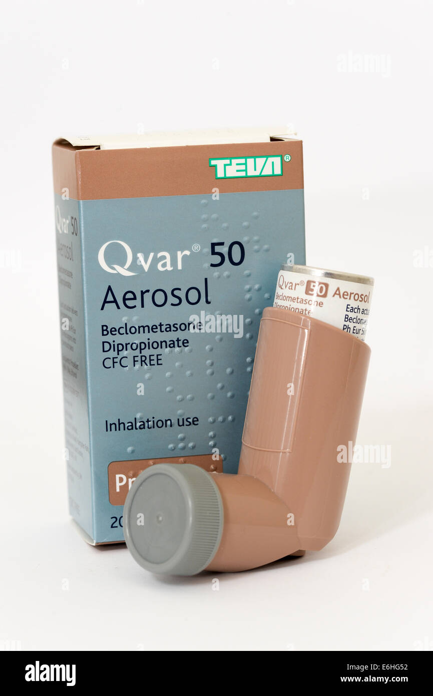 Qvar 50 aerosol inhaler as used by asthma sufferers - Stock Image