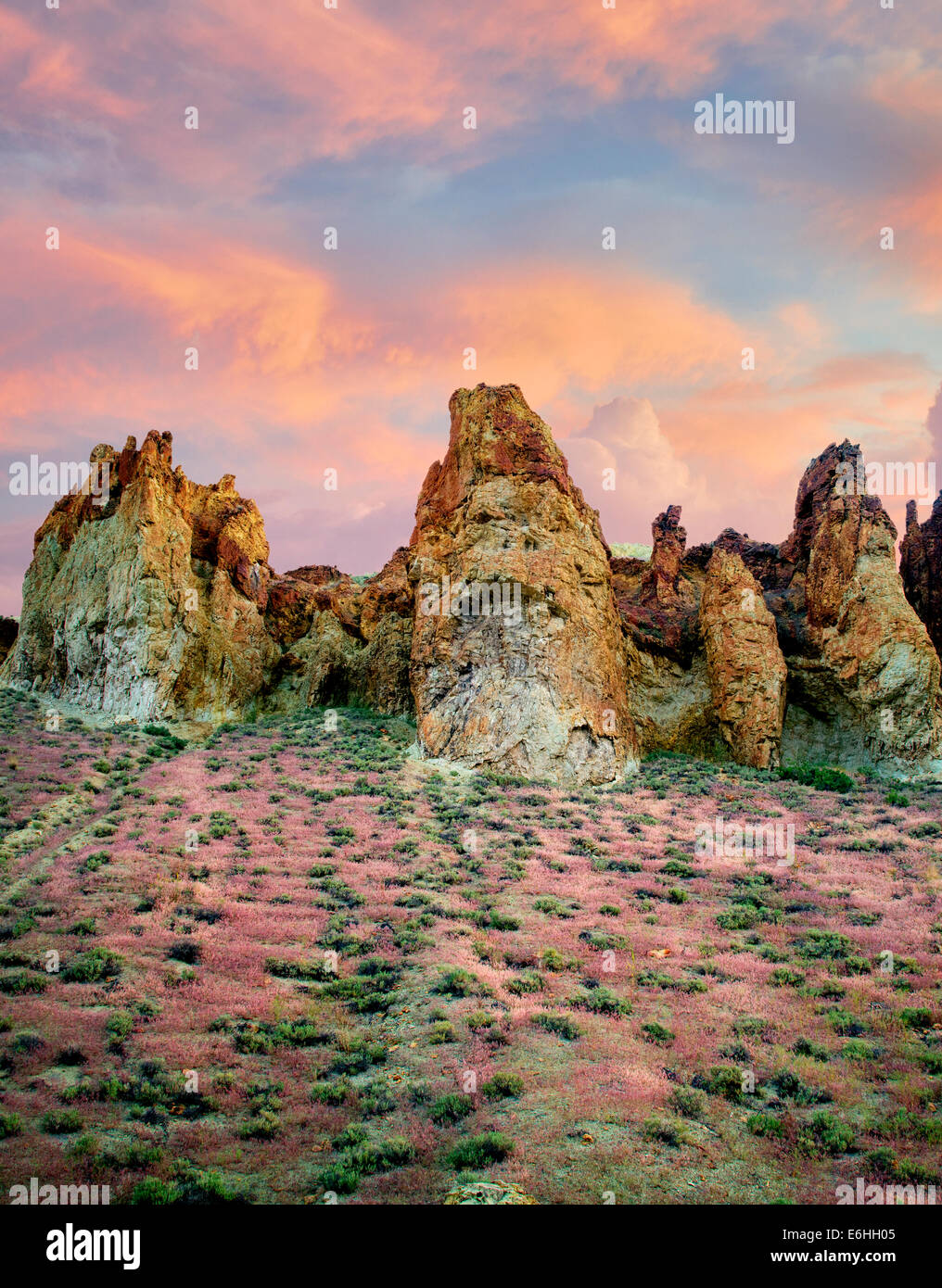 Rock formations with red Brome Grass and clouds in Leslie Gultch. Malhuer County, Oregon - Stock Image