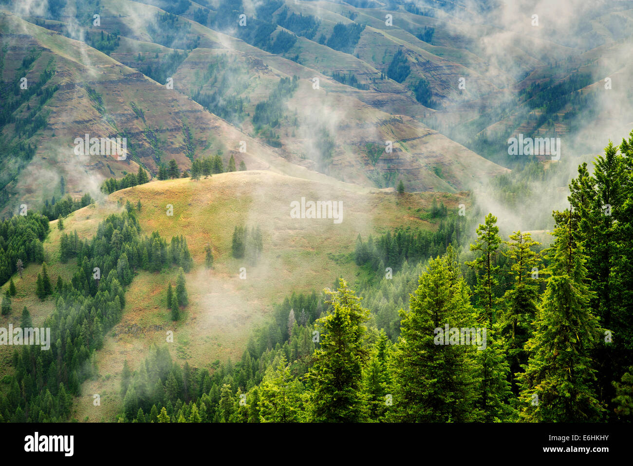 Joseph Canyon Overlook with clearing rain clouds, Oregon - Stock Image