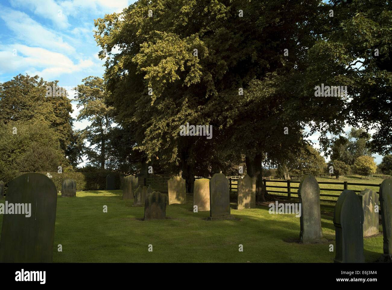 Birkby Church showing graves and fine Yew trees - Stock Image