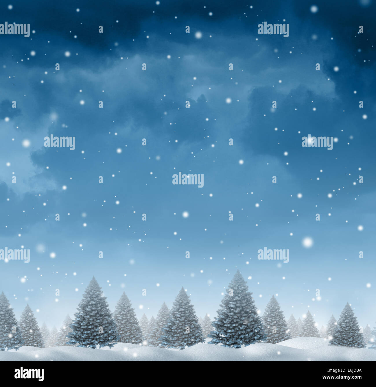 Winter snow background concept with a cold blue forest of pine trees on a snowing holiday night sky as a design - Stock Image