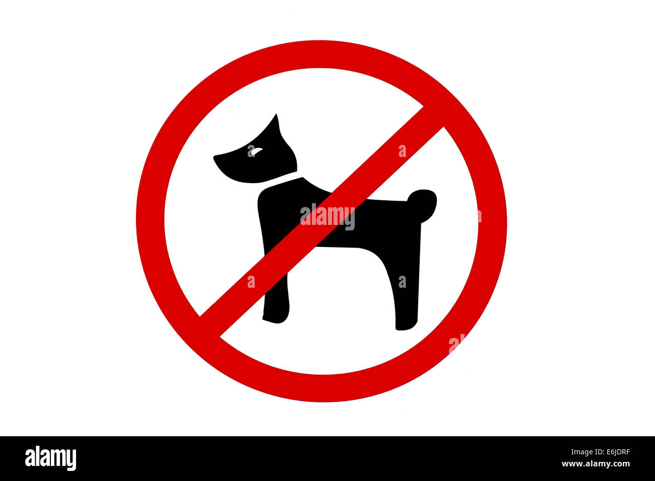 No dogs allowed sign on white background. - Stock Image