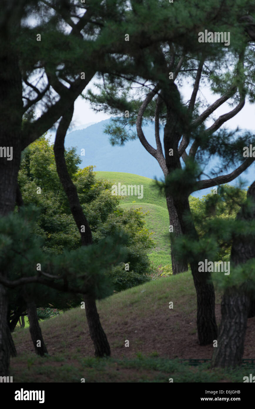 Kyongju, Tumuli Park, Shila Tombs. South Korea. Stock Photo