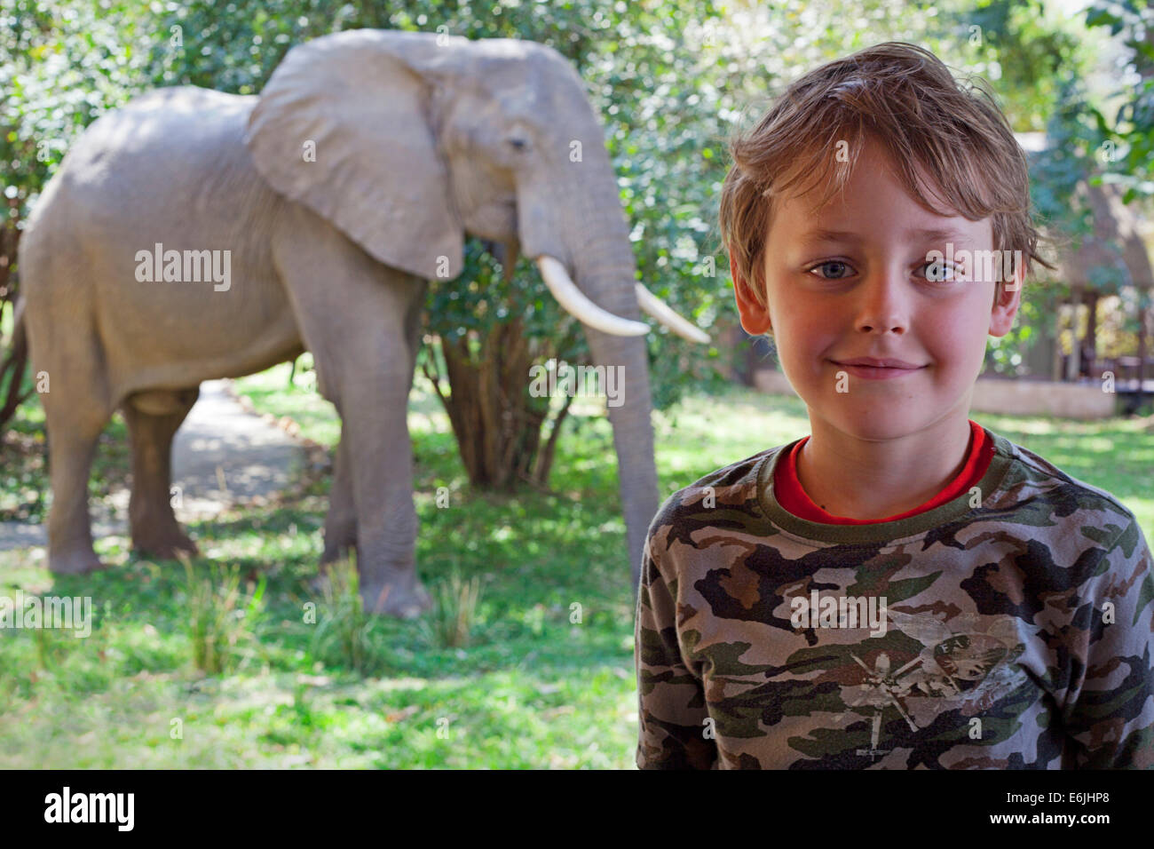 Young boy and an elephant close encounter, Zambia - Stock Image