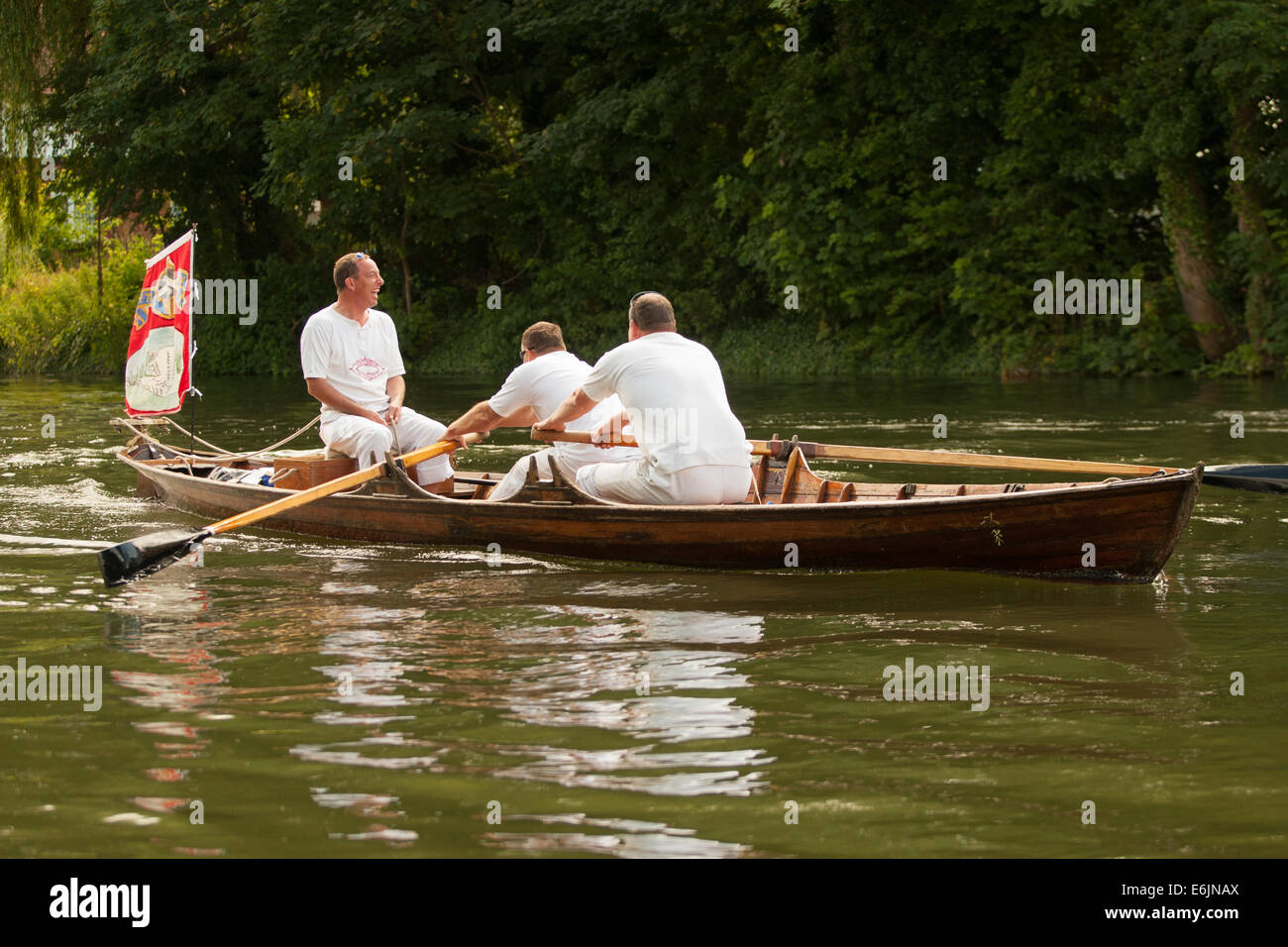 The annual ceremony of Swan Upping on the River Thames in WIndsor. - Stock Image
