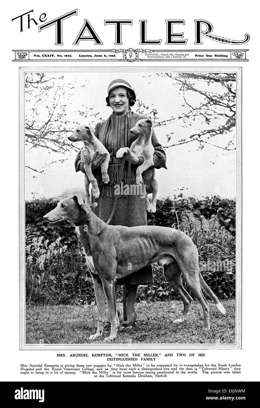 Mick the Miller, 1932 magazine cover showing the famous dog and its owner Mrs Arundel Kempton - Stock Image