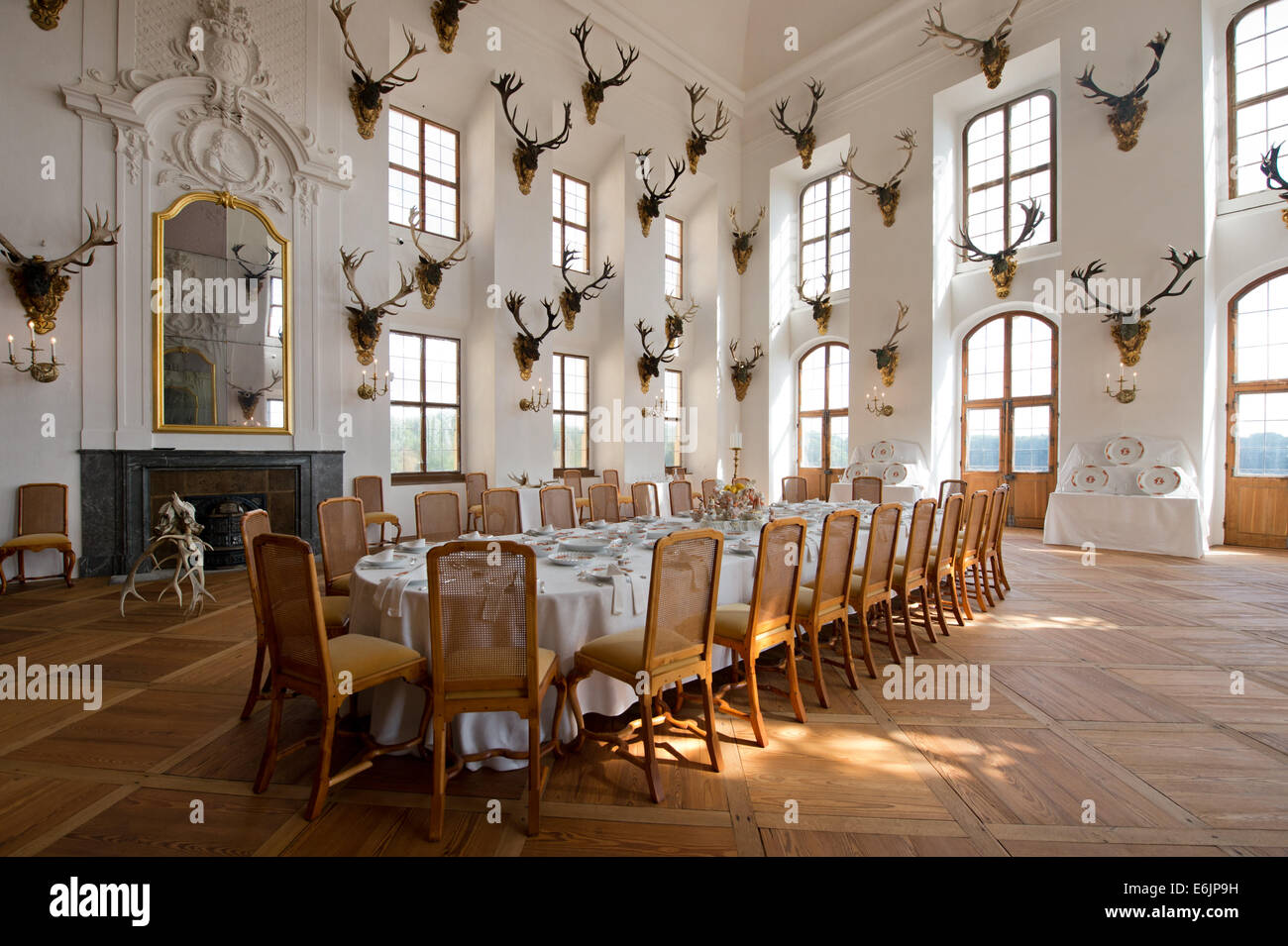 Moritzburg, Germany. 19th Aug, 2014. A view of the richly decorated ballroom in Moritzburg palace in Moritzburg, Stock Photo