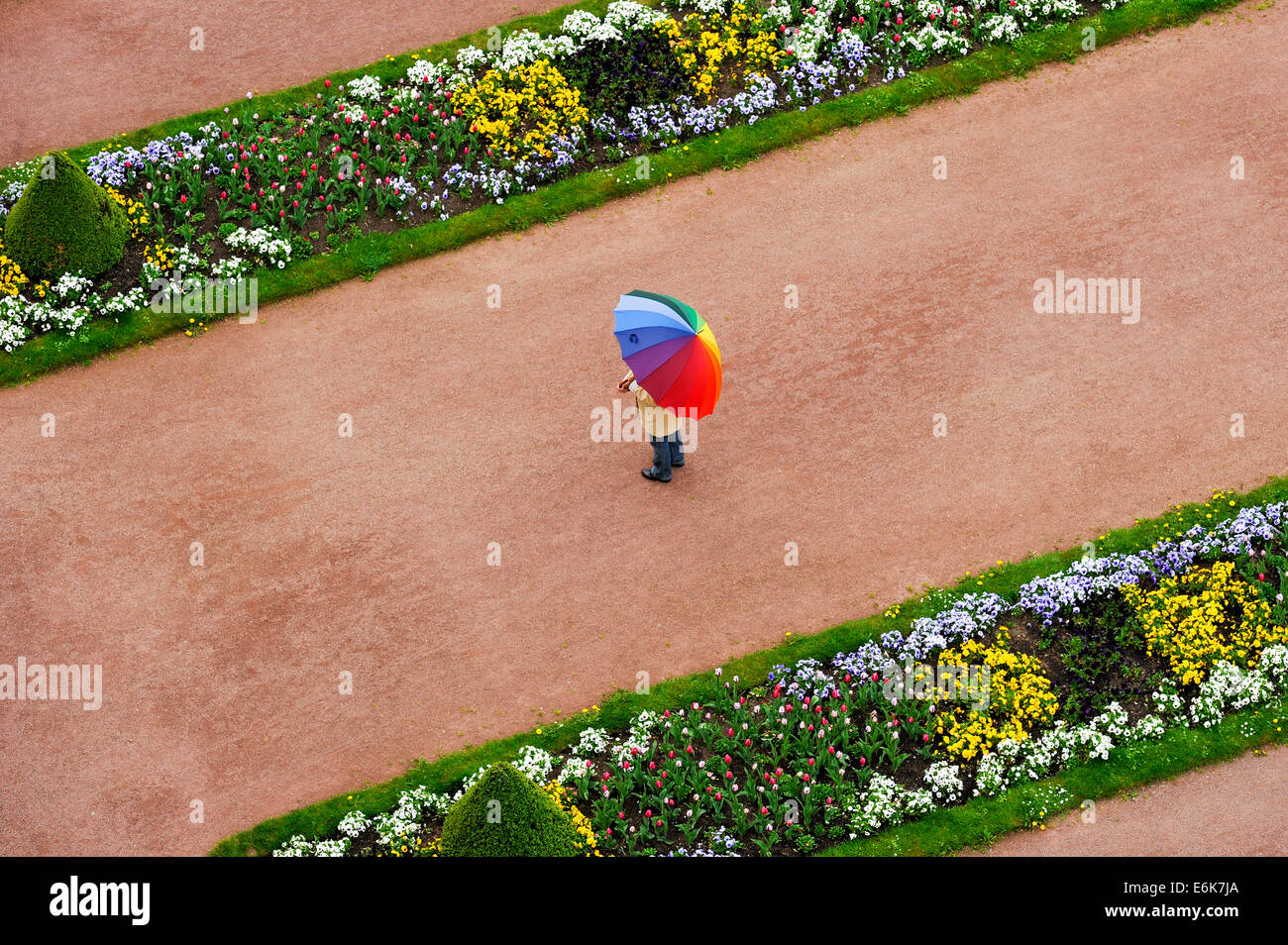 Person with umbrella in rainbow colors on a red gravel path between flower beds in the castle gardens - Stock Image