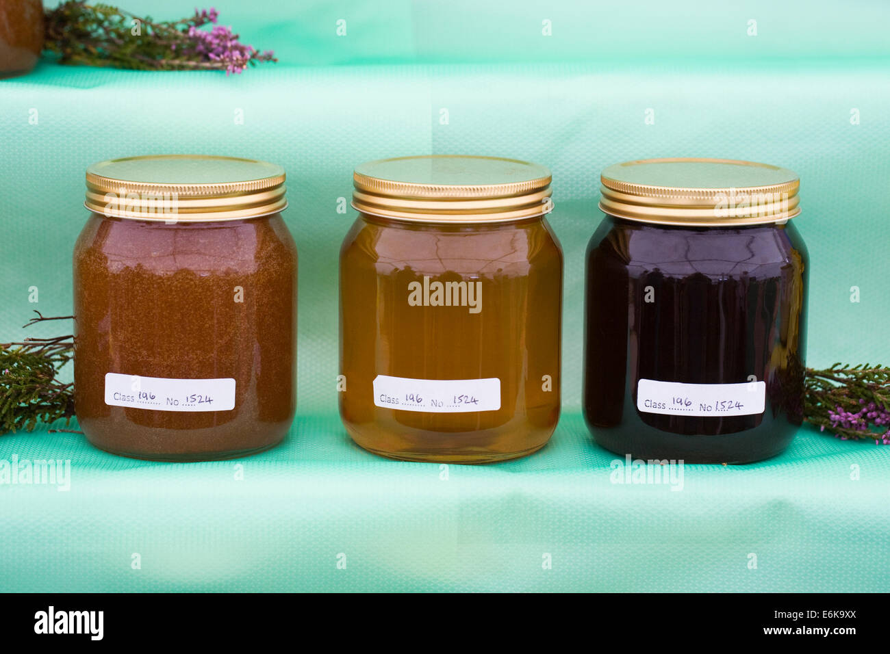 Home produced Honey on display at an agricultural show. - Stock Image