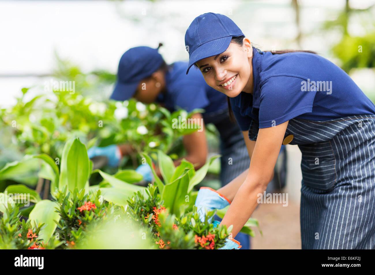 beautiful female nursery worker trimming plants Stock Photo