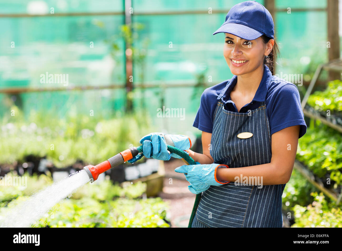 happy florist watering flowers in greenhouse Stock Photo