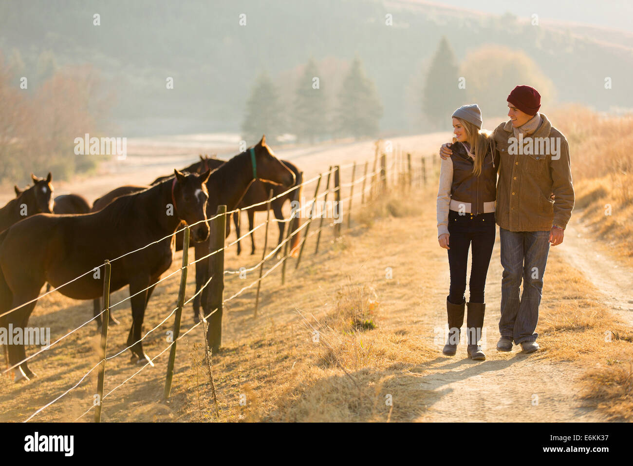 young romantic couple walking in the horse farm - Stock Image