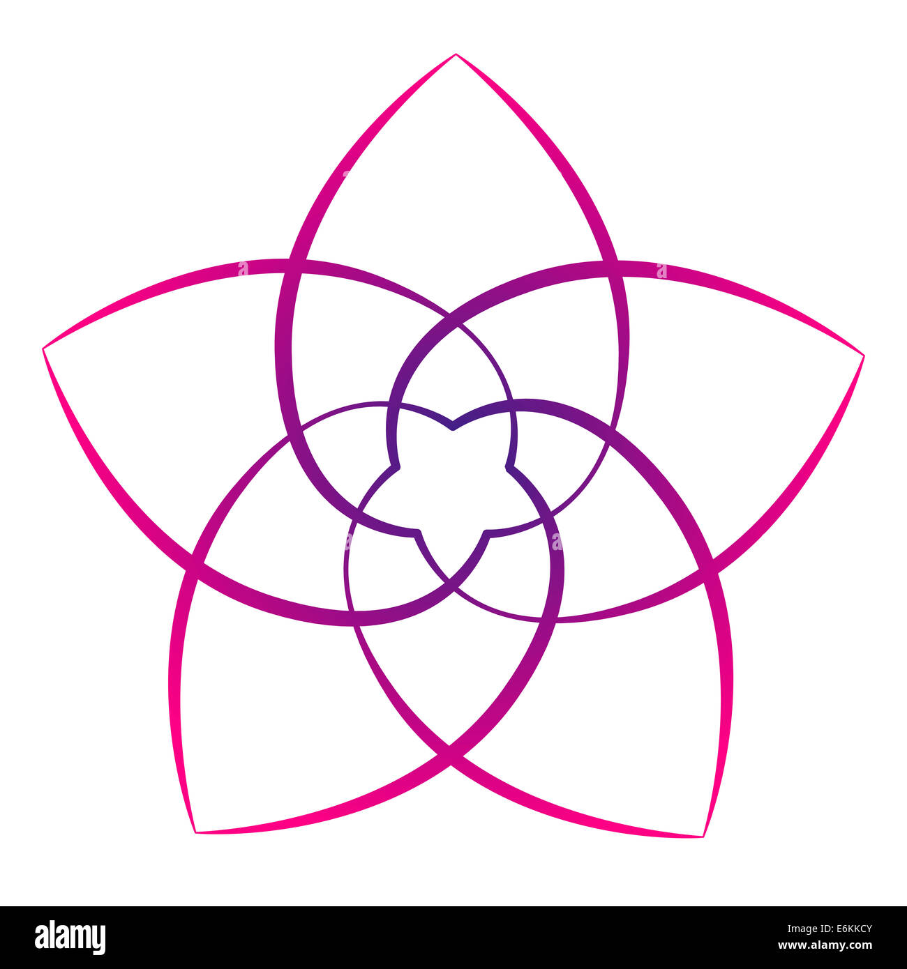 Pink Flower Of The Venus Symbol Of Love And Harmony Stock Photo
