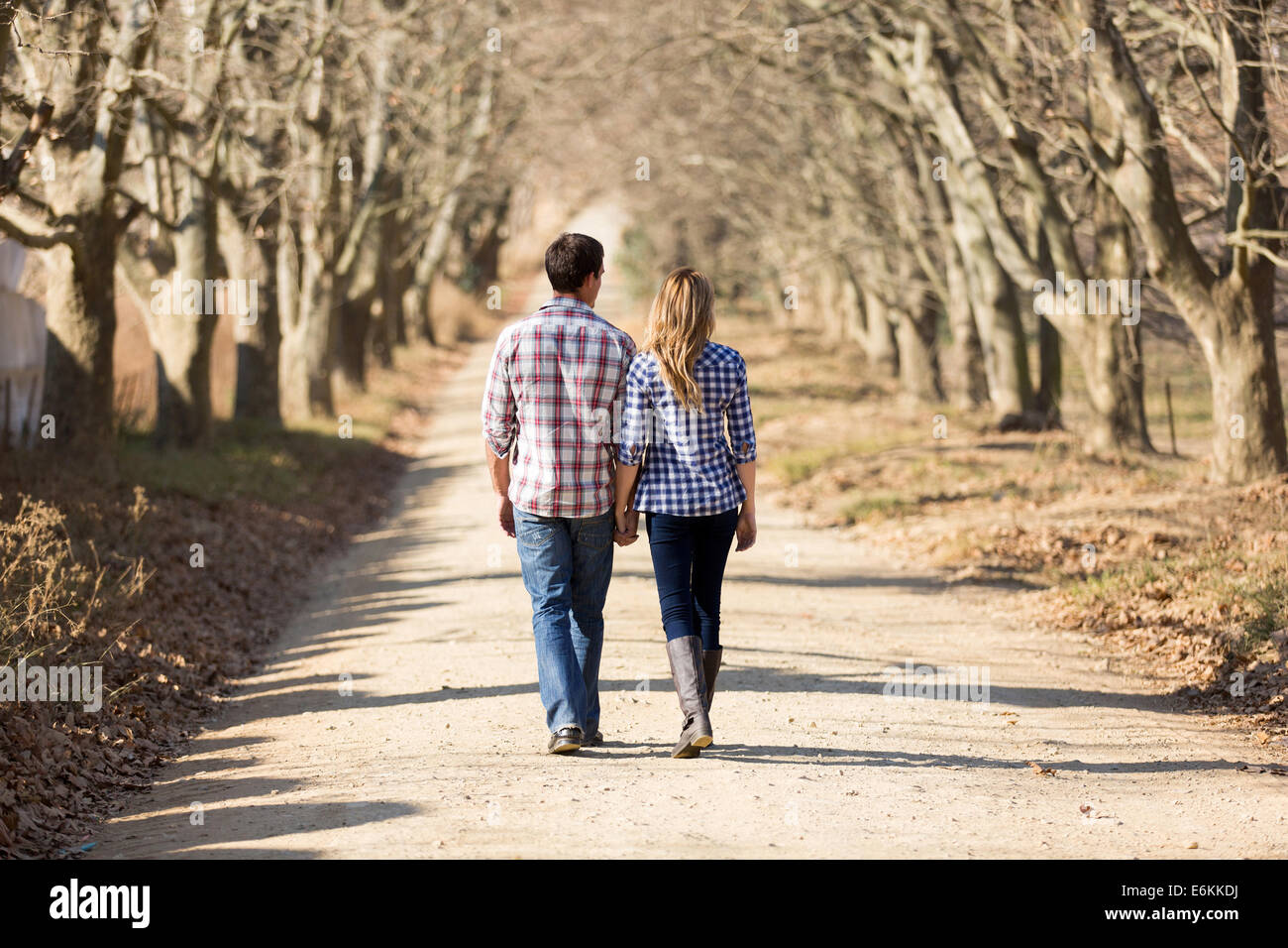 rear view of couple holding hands walking in autumn countryside - Stock Image