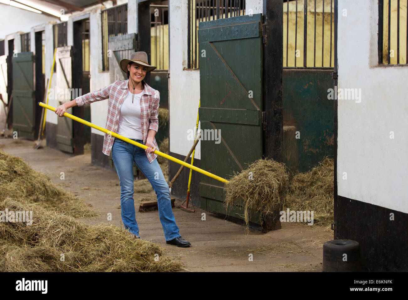 young female horse breeder working inside stable - Stock Image