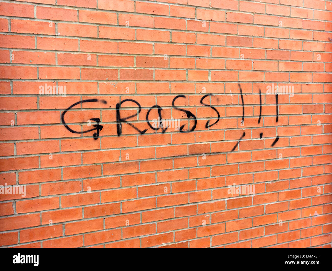 Graffiti on a house reading Grass!!!, meaning that the inhabitant is allegedly a police informer - Stock Image