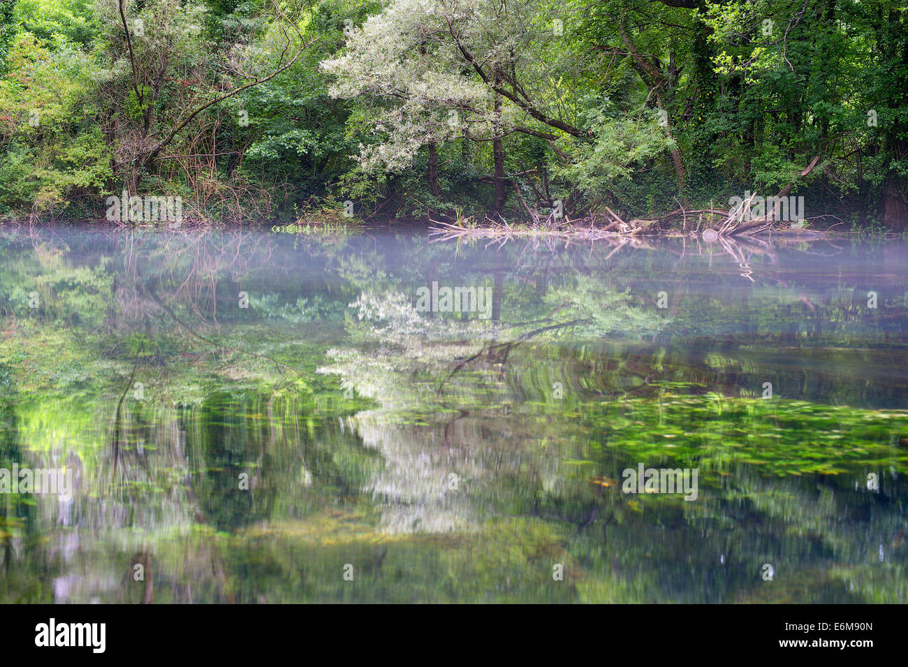 Trees reflected in a mountains river. Martin Brod, Bosnia and Herzegovina - Stock Image