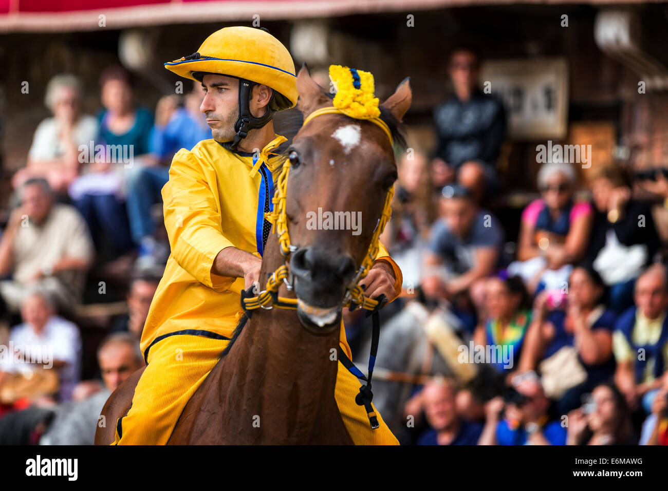 A jockey in Palio di Siena horse race on Piazza del Campo, Siena, Tuscany, Italy - Stock Image