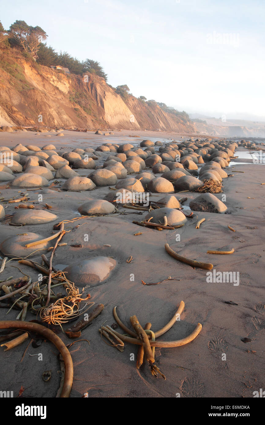 Bowling Ball Beach At Sunset Mendocino County California Stock