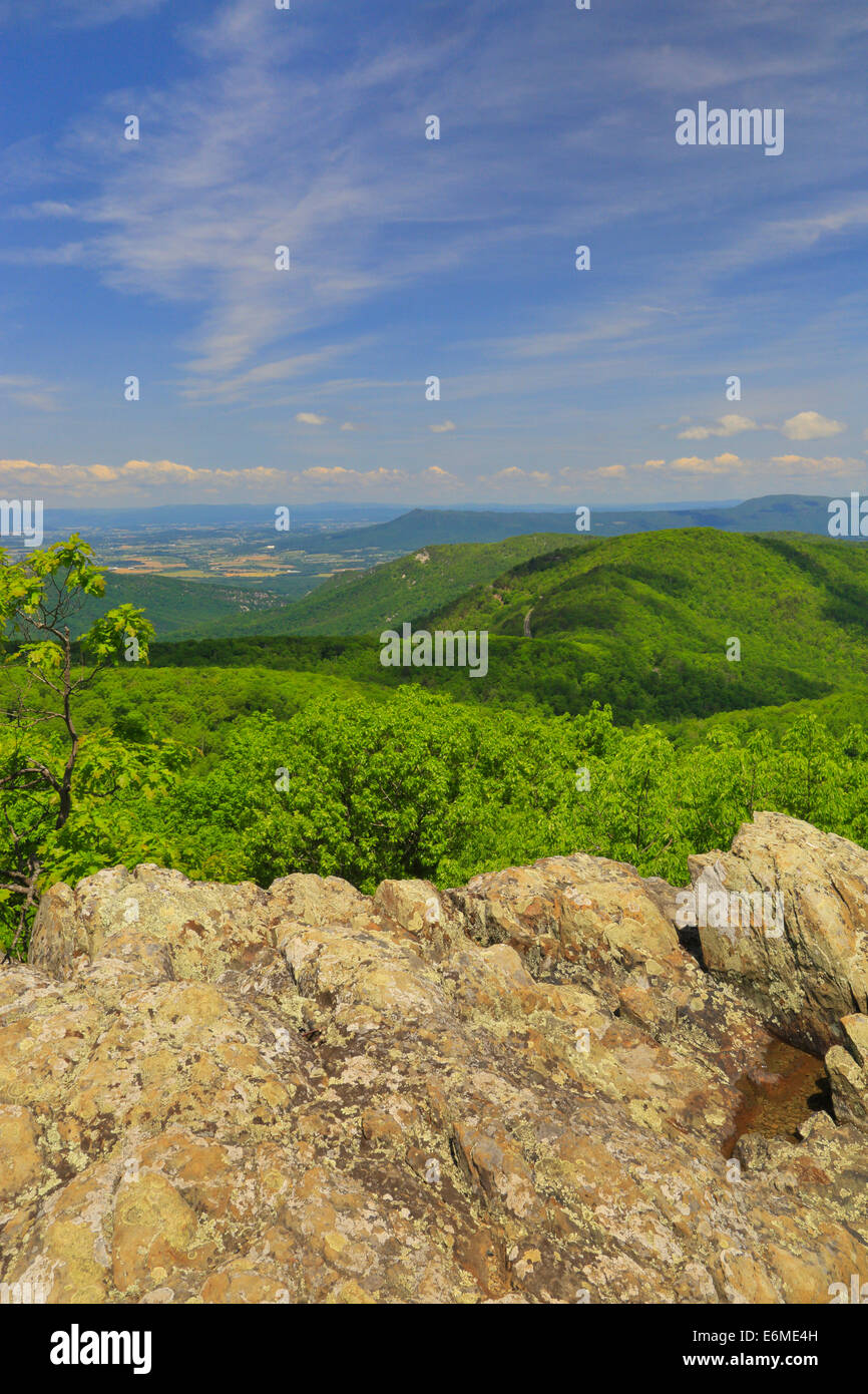 View from Frazier Discovery Trail, Loft Mountain, Shenandoah National Park, Virginia, USA - Stock Image
