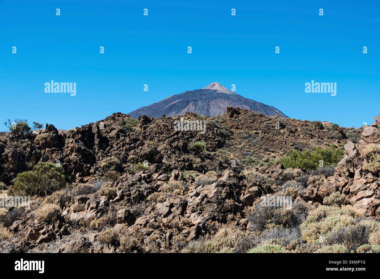 Volcanic landscape, Llano de Uruanca plateau with Pico del Teide, 3718m, Parque Nacional de las Cañadas del - Stock Image