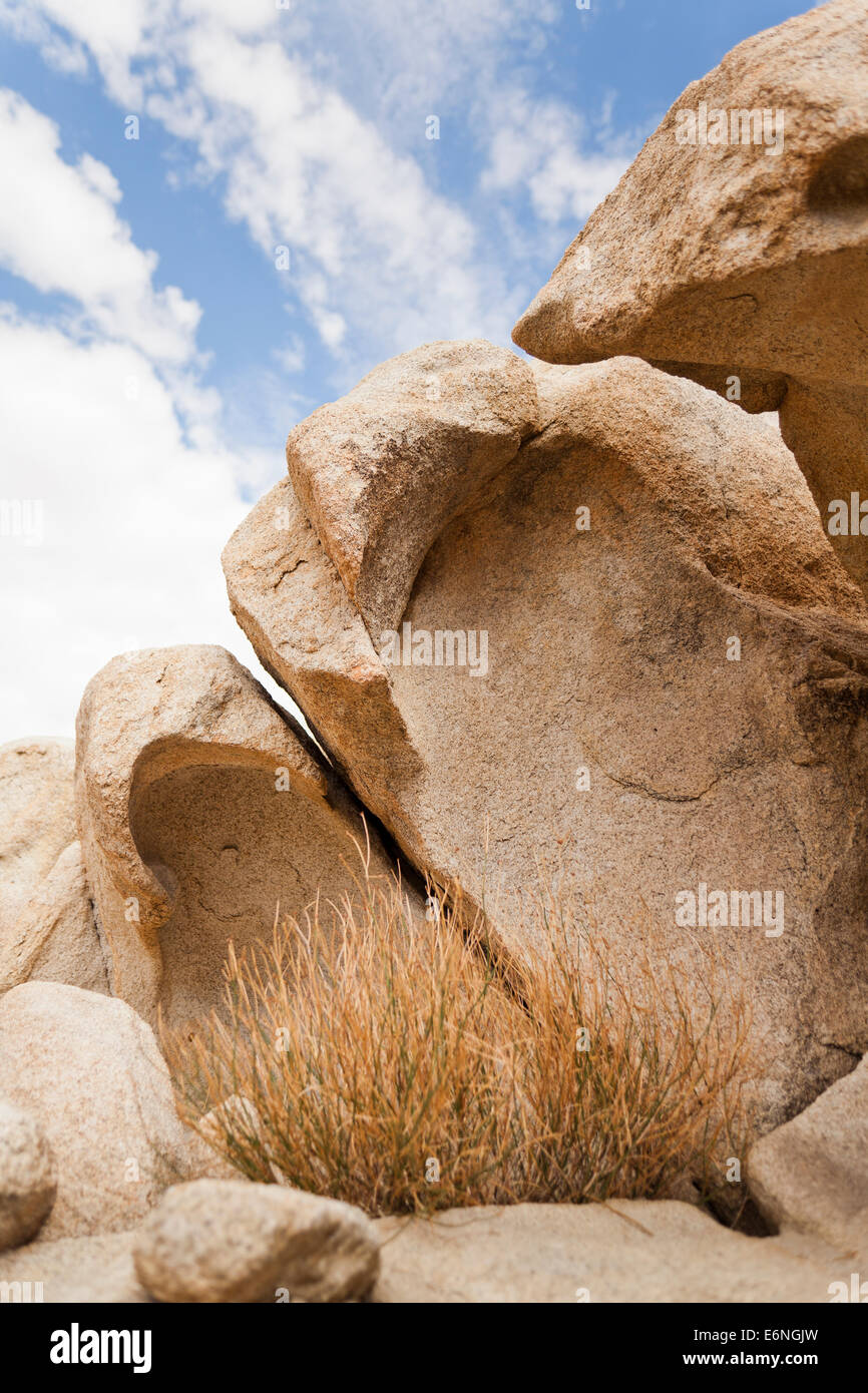 Unique gneiss rock formations displaying wind erosion - California USA - Stock Image