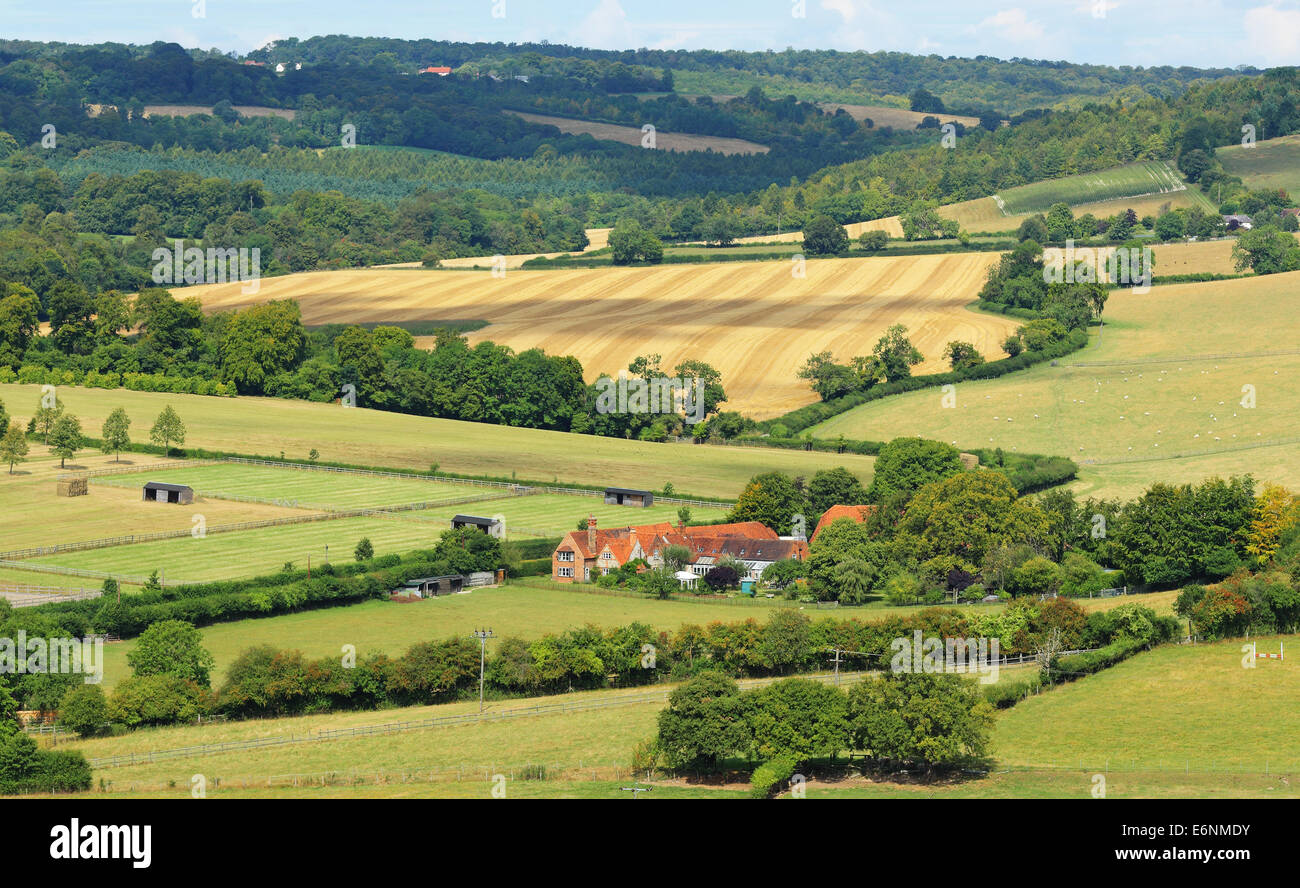 Farmhouse in the rolling Chiltern Hills in Buckinghamshire - Stock Image