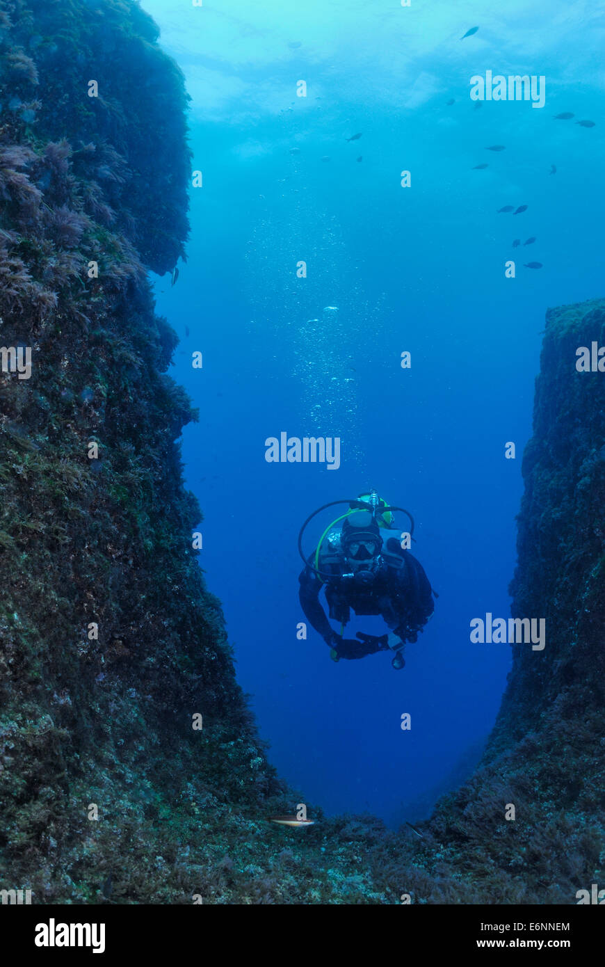 Scuba diver swimming by underwater rock formation, Mediterranean Sea, France, Europe - Stock Image