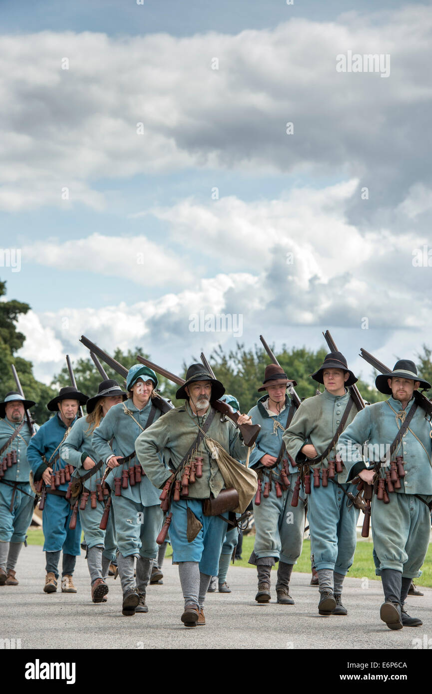 Sir William Pennymans Regiment. English Civil War. Royalist Army at a Reenactment Military Show. UK - Stock Image