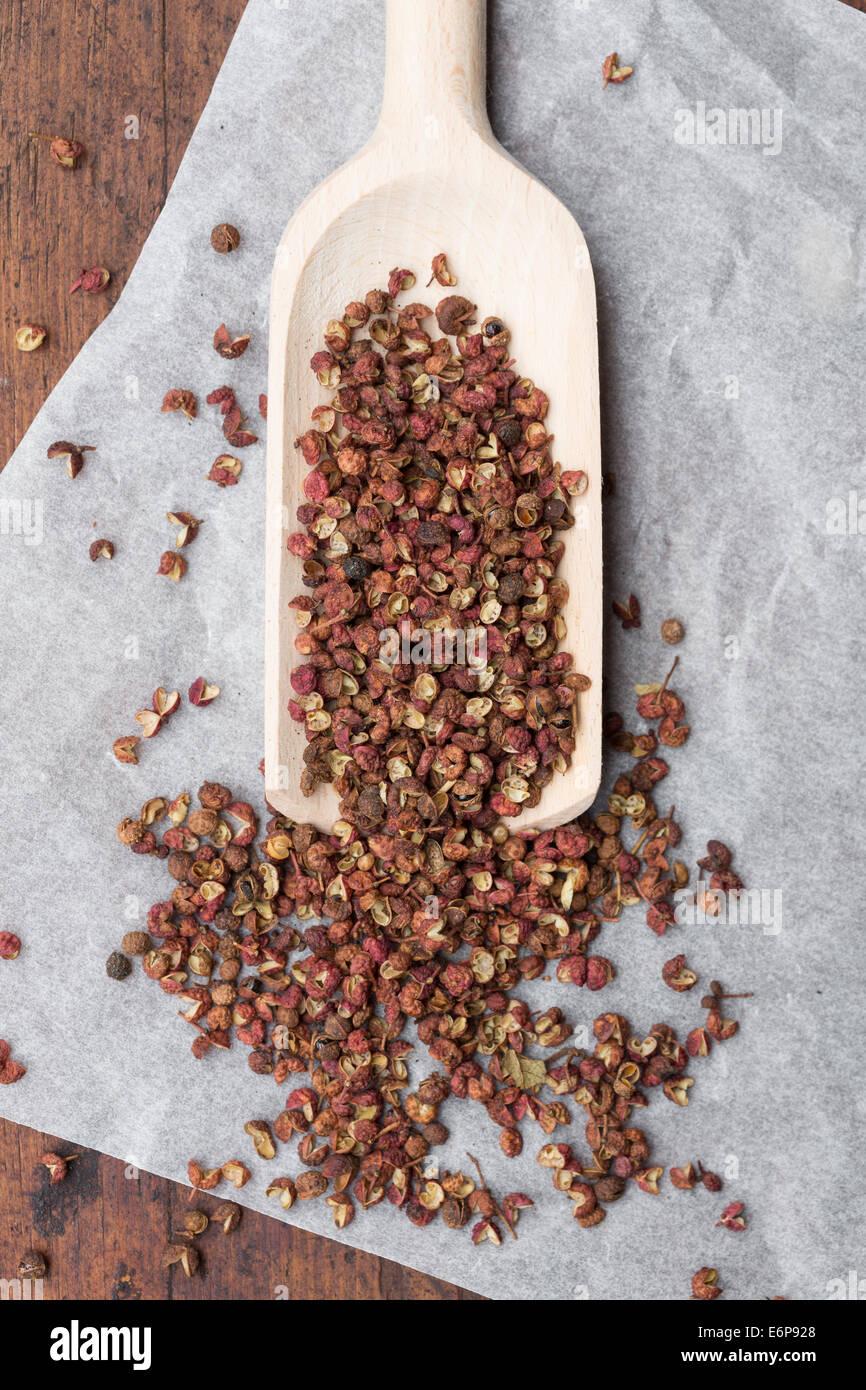 Sichuan pepper or Szechuan pepper (Zanthoxylum piperitum) Stock Photo
