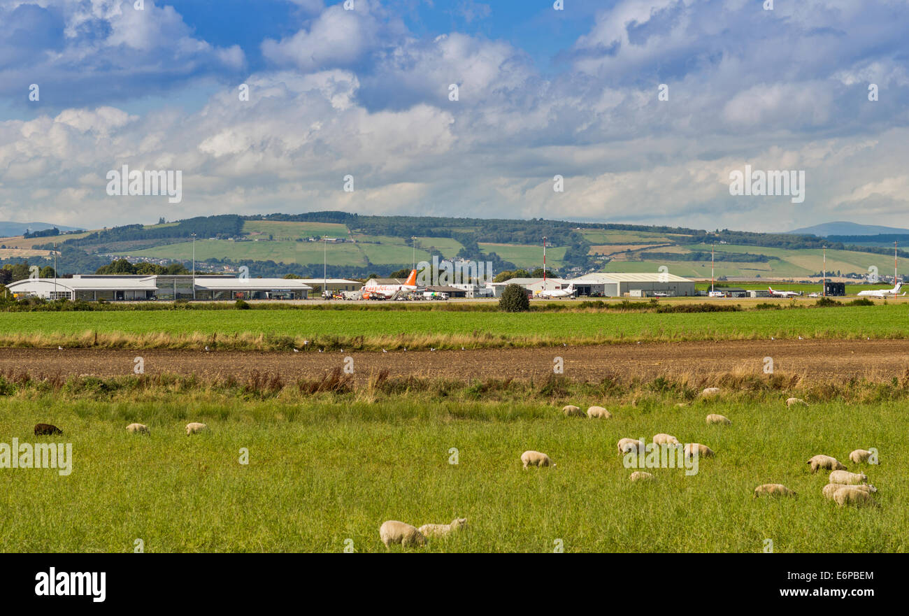 INVERNESS DALCROSS AIRPORT SCOTLAND AIRCRAFT ON THE TARMAC AND A FIELD WITH SHEEP - Stock Image